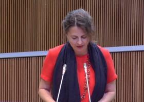 Intervenció de Rosa Gili en el debat de la modificació del codi de procediment civil